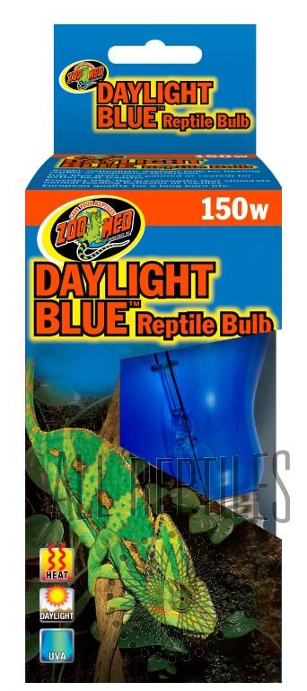 ZM Daylight Blue
