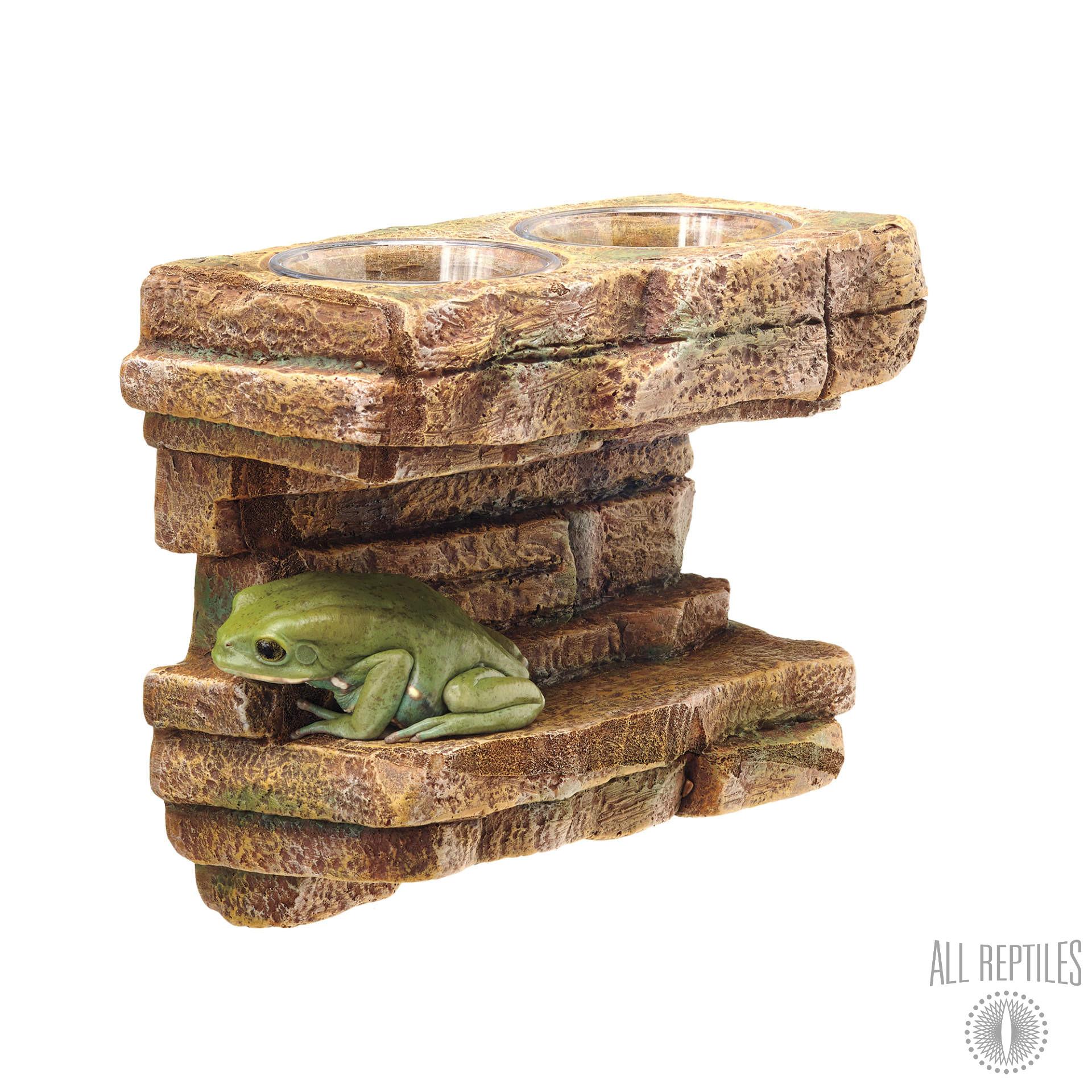 Zilla Rock Feeding Ledge