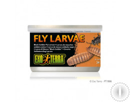 Exo Terra Canned Black Soldier Fly Larvae