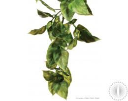 Exo Terra Shrub Plant Amapallo