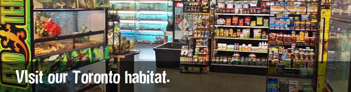 Visit our Toronto habitat.